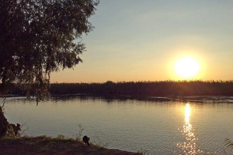 """База отдыха """"Рыбоход"""", Астраханская область, с. Каралат"""